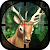 Moose Hunting 2016 file APK Free for PC, smart TV Download