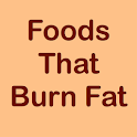 FOODS THAT BURN FAT icon