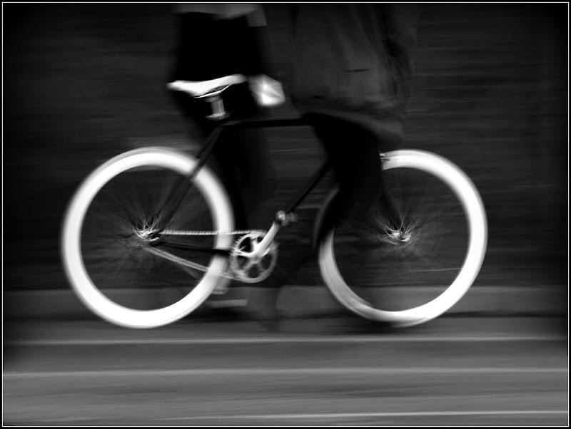 Ha la bicicletta ma non pedala di Francesca Zaia