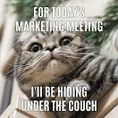 Hiding Under the Couch - Facebook Carousel Ad item