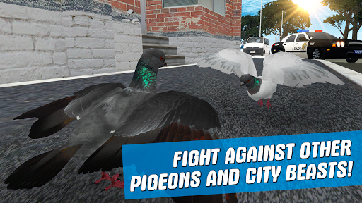 City Bird Pigeon Simulator 3D