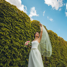 Wedding photographer Dima Didenko (dds1ds). Photo of 04.11.2014