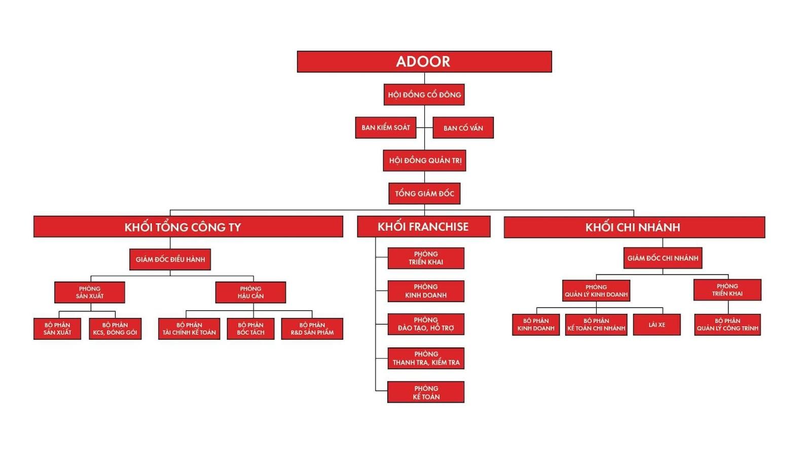 Hệ thống cơ cấu tổ chức chuyên nghiệp của Adoor