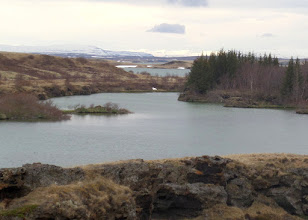 Photo: Lake Myvatn, known for its diverse bird populations, was sculpted by volcanic eruptions.
