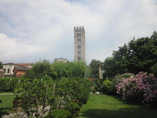Lucca di emanuela_dolci