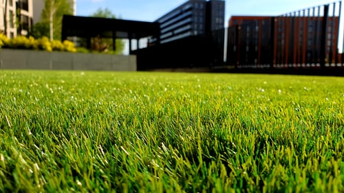 lay down artificial grass