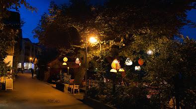 Photo: Lampionový strom