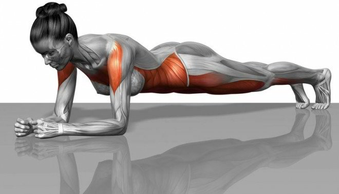 Tighten Your Belly in 21 Days with the Plank Challenge