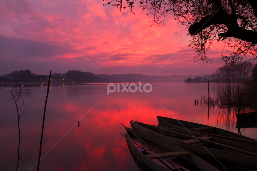 Under a Blood Red Sky by Nuno Martins - Landscapes Waterscapes ( pateira aveiro fermentelos sunrise boats trees )