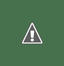 Photo: Boina-bocrate