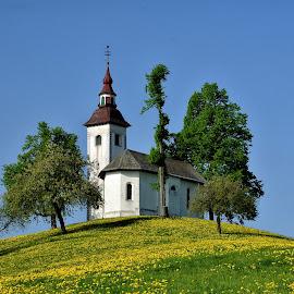Sv.Tomaž by Bojan Kolman - Buildings & Architecture Places of Worship