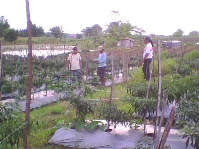 Photo: gubernur lan jatim