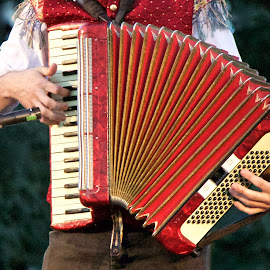Playing the Red Bandoneon  by Venetia Featherstone-Witty - Artistic Objects Musical Instruments ( musical instrument, hands, bandoneon, people, colors,  )