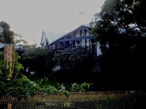 Bray House garden