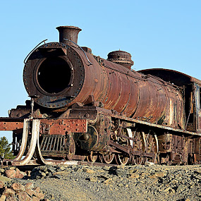 Old Steam Train by Danette de Klerk - Transportation Trains ( karoo, history, railway, klipplaat, train, trains )