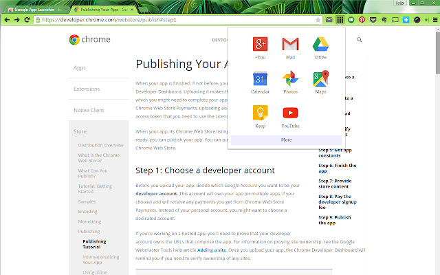 Google Services Launcher