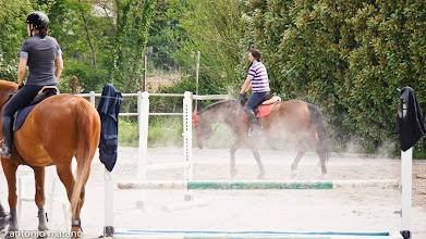 Photo: Cavalli e cavalieri