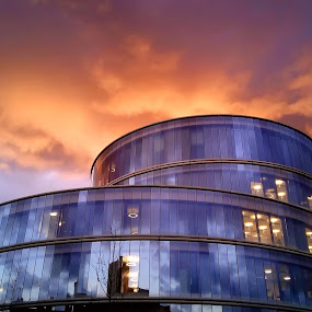 The Blavatnik School of Government Building,Jericho,Oxford by Tony Steele - Buildings & Architecture Architectural Detail