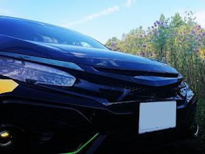 シビック FK7 ハッチバックのカスタム事例画像 NONNPIKO☆P.Pさんの2020年10月06日19:41の投稿