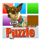 PIPI the Chihuahua puzzle