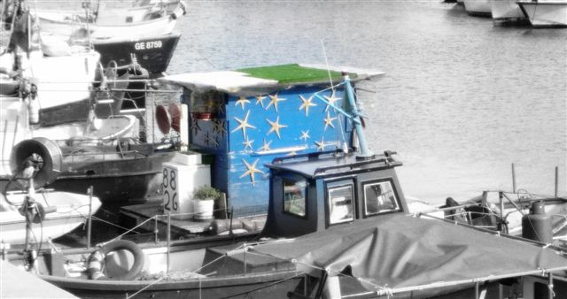 stelle in porto di decavero