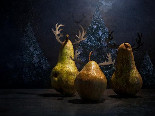 Natale pe.renne di bi