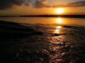 Photo: Sun On The Mud