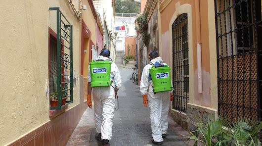 El Ayuntamiento desinfecta las calles del Casco Histórico