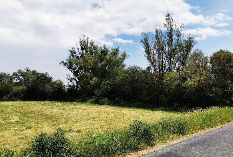Vente Terrain à bâtir - 500m² à Beaulieu-lès-Loches (37600)