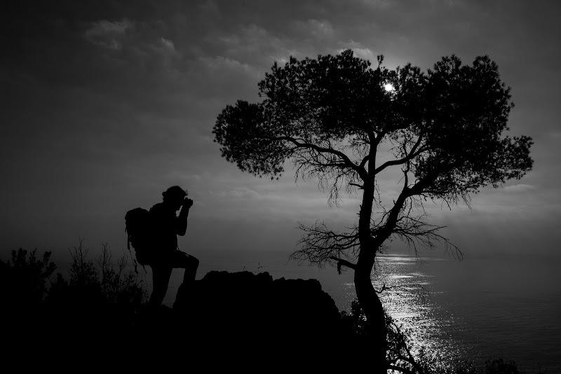 Il fotografo e l'albero di LucaMonego