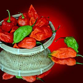 Hot by Asif Bora - Food & Drink Ingredients (  )