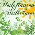 Heilpflanzen / Heilkräuter icon