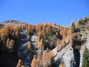 Photo: Herbst