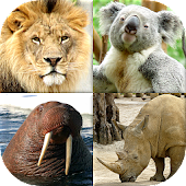 Animals Quiz - Learn All Mammals and Birds!