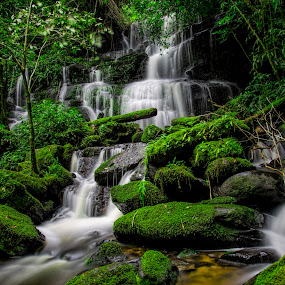Waterfalls by Gurung Purna - Landscapes Waterscapes ( water, waterfalls, green, falls, white )