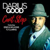 Can't Stop (The Remix) [feat. Erica Wilkins & TJ Clarke]