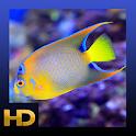 Peaceful Aquarium HD icon