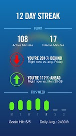 Nike+ FuelBand Screenshot 2