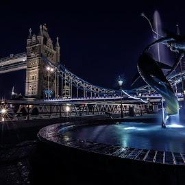 Tower Bridge by Michael Ripley - Buildings & Architecture Public & Historical ( london, city, night, cityscape, tower bridge, architecture )