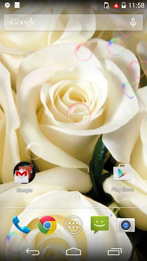 White Beauty Love Flower LWP
