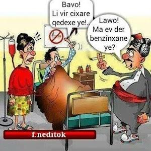 Kurdi Karikatur-Cartoon screenshot 1