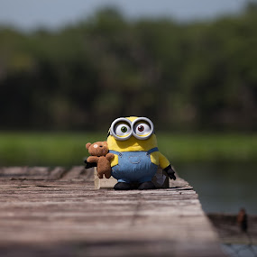 on the dock by Debi Henry - Animals Other ( toys, yellow, relaxing, dock, river )