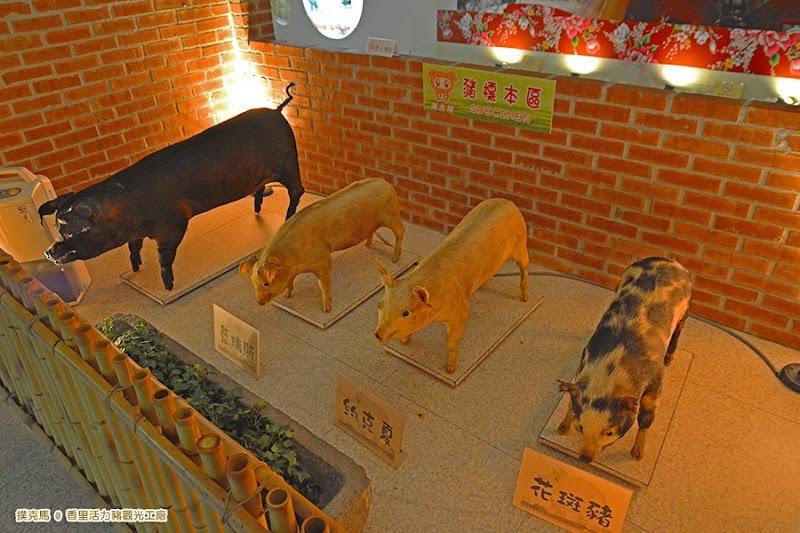 香里活力豬觀光工廠豬標本