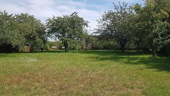 terrain à Sainville (28)