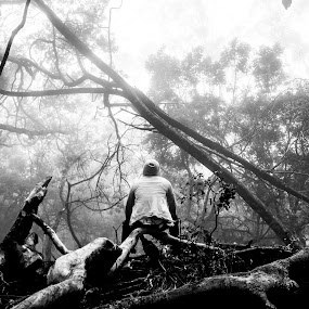 SOLITUDE by Kevin Navis - Black & White Portraits & People ( patterns, pensive, black and white, people, trees )