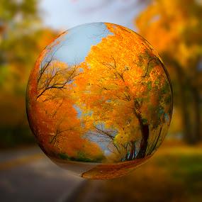 Look in the Crystal Ball by John Williams - Digital Art Abstract ( abstract, crystal ball, fall colors, autumn, 3d, digital art )