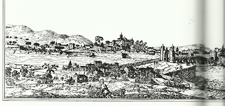 Photo: Outra boa nova para o desenvolvemento foi de seguido outros novos privilexios porque en novembro de 1248 Pontevedra envía 20 naves para a toma de Sevilla, baixo o mando de Paio Gómez Charino, incorporándose á tropa cristiana mandada por o almirante Ramón Bonifaz. Dous destes privilexios datan de 1229, e corresponden a Alfonso IX  e Fernando III o Santo, confirmados logo  por Alfonso XI- 1316, e afectaban directamente a actividade marítimo pesqueira . Estes foron, primeiro o da exención do imposto da galea, e o segundo, o privilexio de poder salgar e resalgar a sardiña. O mesmo rei Alfonso XI concede a Pontevedra a fabricación exclusiva de graxa de saín (1238).