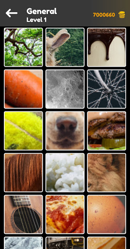 Zoom Quiz: Close Up Picture Game, Guess the Word  screenshots 1
