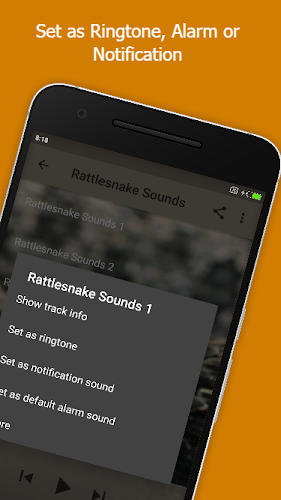 Rattlesnake Sounds APK | APKPure ai