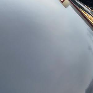 オデッセイ RC2 アブソルートEXのカスタム事例画像 りおさんの2020年09月26日17:35の投稿